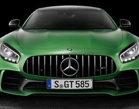 Mercedes vẫn cân nhắc sản xuất AMG GT R Roadster