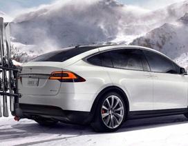 Xe chạy điện dẫn đầu thị trường ô tô Na Uy