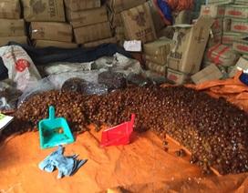 Hơn 10 tấn mứt, nho, hạt dẻ không nguồn gốc