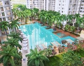 Ở căn hộ resort giá mềm, ngắm sông