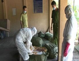 Bắt giữ gần 1 tấn nầm lợn bẩn nhập lậu từ Trung Quốc