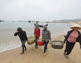 Tuần này duyệt định mức tiền đền bù cho ngư dân 4 tỉnh miền Trung