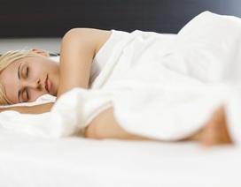 Học cách ngủ của các chuyên gia