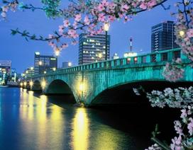 Du học Nhật tại thành phố Niigata – Thủ tục đơn giản, chi phí hợp lý