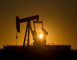 Giá dầu vượt mốc 45 USD/thùng