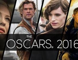 Sáng nay diễn ra lễ trao giải Oscar lần thứ 88