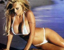 """""""Quả bom sex"""" Pamela Anderson đến Oxford thuyết giảng về phim khiêu dâm"""
