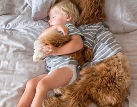 """Tình bạn dễ thương của bé và """"bạn bốn chân"""" gây nức lòng dân mạng"""