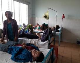 Gần 50.000 trường hợp mắc sốt xuất huyết trên cả nước