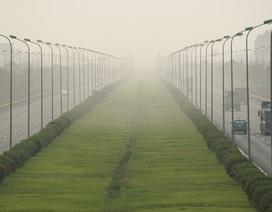 Rà lại chi phí cắt cỏ, Hà Nội sẽ tiết kiệm được 700 tỷ đồng
