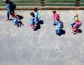Học tập ngoài trời cải thiện kết quả của trẻ em