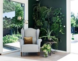 4 bước đơn giản để mang phong cách kiến trúc Úc vào không gian sống