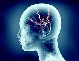 Không ham hoạt động thể chất  là dấu hiệu của thông minh?