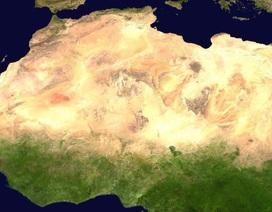 Thảm thực vật của trái đất đã thay đổi từ thập niên 80