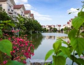 Sống sinh thái giữa lòng thủ đô