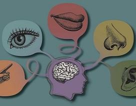 Giao tiếp tiếng Anh hiệu quả 99% với phương pháp đa giác quan
