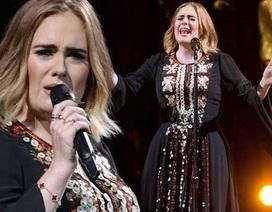 """Adele gây choáng khi """"bỏ túi"""" hơn 2 tỉ đồng/ ngày"""