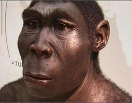 Hóa thạch 120.000 tuổi cho thấy dấu vết của bệnh ung thư