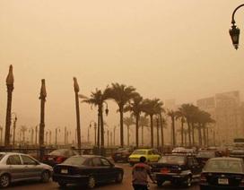 Quan trắc khí thải CO2 do con người tạo ra từ không gian