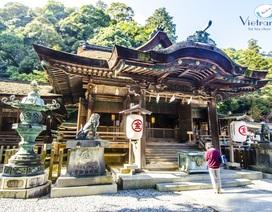 Tour Nhật - Chào năm mới siêu khuyến mãi