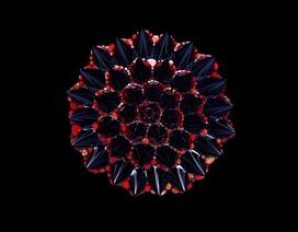 Ngắm nhìn những hình ảnh ấn tượng của chất lỏng từ