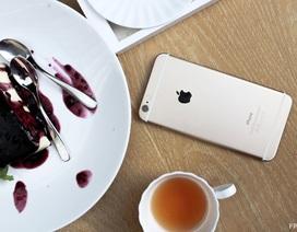"""iPhone 7 Plus ra mắt là thời điểm tốt để mua iPhone 6 Plus giá """"hời"""""""