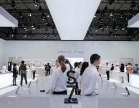Apple đang thất thế trong cuộc đua công nghệ màn hình cong