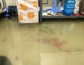 Cám cảnh sinh viên bì bõm lên trường tránh lụt