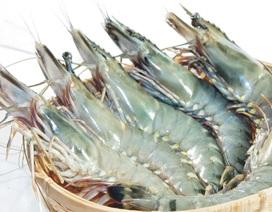 Bí quyết giúp các bà nội trợ chọn đồ hải sản tươi ngon