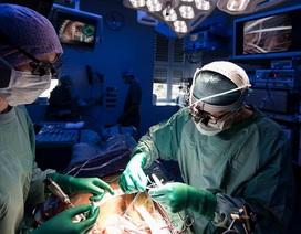Anh: Hàng trăm người đã được ghép tạng từ bệnh nhân ung thư đã chết