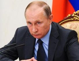 """Tổng thống Putin tính lập cơ quan """"siêu tình báo"""" sau khi đảng cầm quyền thắng lớn"""