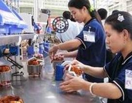 Hỗ trợ tạo việc làm tại các trường dạy nghề