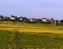 Thủ tướng yêu cầu xử lý sai phạm đất đai tại Nam Định