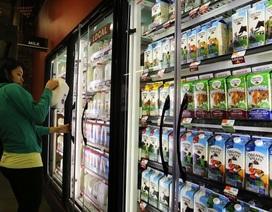 Sữa nguyên kem giúp giảm nguy cơ… béo phì