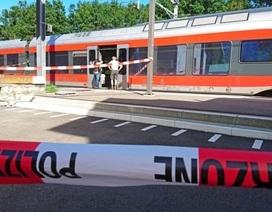 Thụy Sĩ: Phóng hỏa và đâm dao trên tàu hỏa, 7 người bị thương
