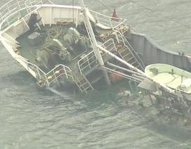 Tàu chở hàng trăm tấn hóa chất đắm ngoài khơi Nhật Bản