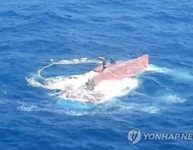 Đã tìm thấy 1 thi thể thuyền viên người Việt bị mất tích ở Hàn Quốc