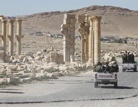 Thành cổ Palmyra: Trận quyết đấu cuối cùng?