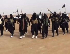 Đảo chính trong nội bộ hàng ngũ IS