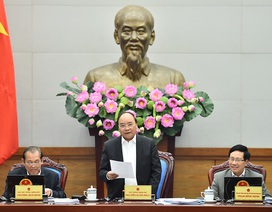 Thủ tướng: Các thành viên Chính phủ cần thẳng thắn góp ý cho nhau
