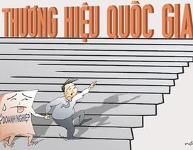 Đừng để nông dân Việt bị những quả đắng từ thương lái Trung Quốc