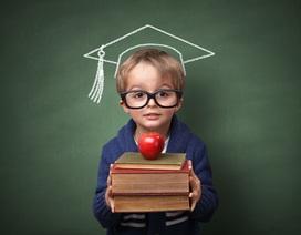 Nhật ký bố đảm hay hành trình tìm nơi học tiếng Anh cho con gái