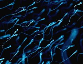 Cặp đồng tính nam có thể tự sinh con nhờ công nghệ đột phá?