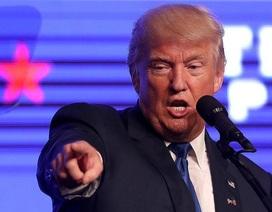 """Donald Trump nói đã """"đoán trước"""" được vụ đánh bom New York"""