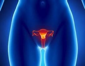 Thuốc hóa trị liệu có thể kích hoạt sản xuất trứng ở phụ nữ