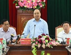 """Thủ tướng: Làm sao có """"nhiều đại bàng"""" làm tổ ở Phú Yên"""