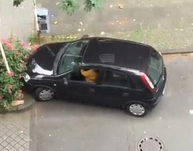 Cần bao nhiêu chỗ để đỗ một chiếc ô tô?