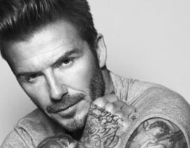 David Beckham sắp đóng phim hành động