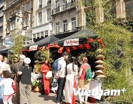 Sắc màu Việt Nam tại Ngày hội đa dạng văn hóa ở Brussels