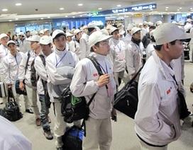 Đình chỉ hoạt động một công ty xuất khẩu lao động tại Thái Bình